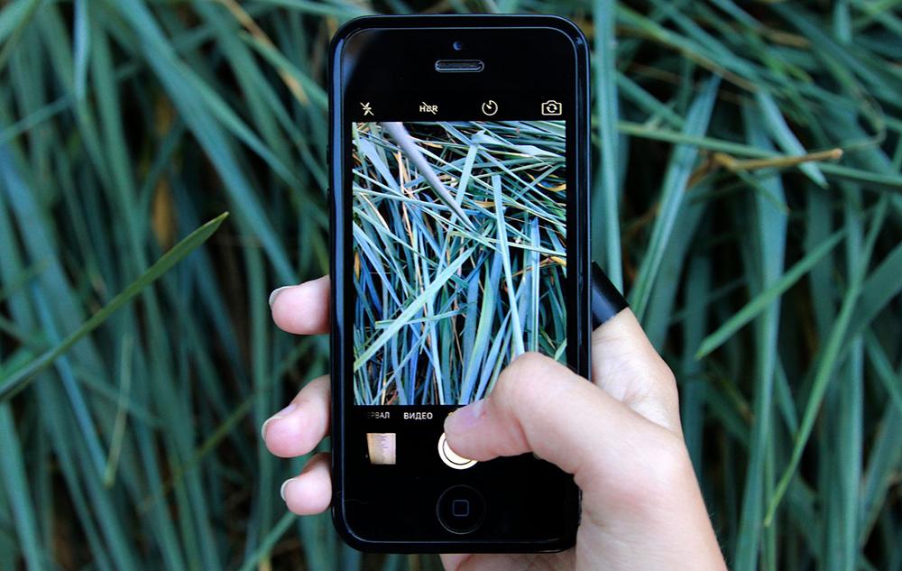 Die besten Apps für ein grüneres Leben