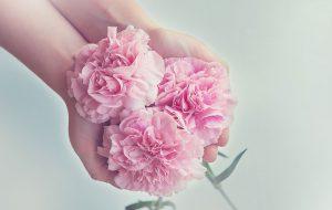 Titelbild Magazin Natürliche Konservierungsstoffe: So bleibt Bio-Beauty frisch Bild: pixabay