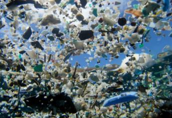 Kracher des Monats: Mikroplastik