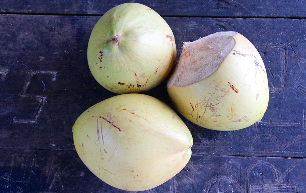 Kokosöl als Schönmacher