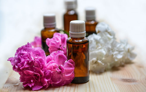 Magazin: Die Seele der Pflanzen: Ätherische Öle Bild: pixabay