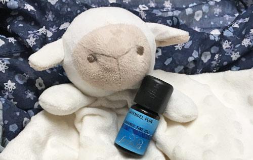 Blog: Aromatherapie für Anfänger: Einsteigerset Gute Besserung von farfalla Lavendel fein bio Bild: naturalbeauty.de