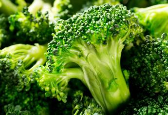 Pflanzenporträt: Brokkoli