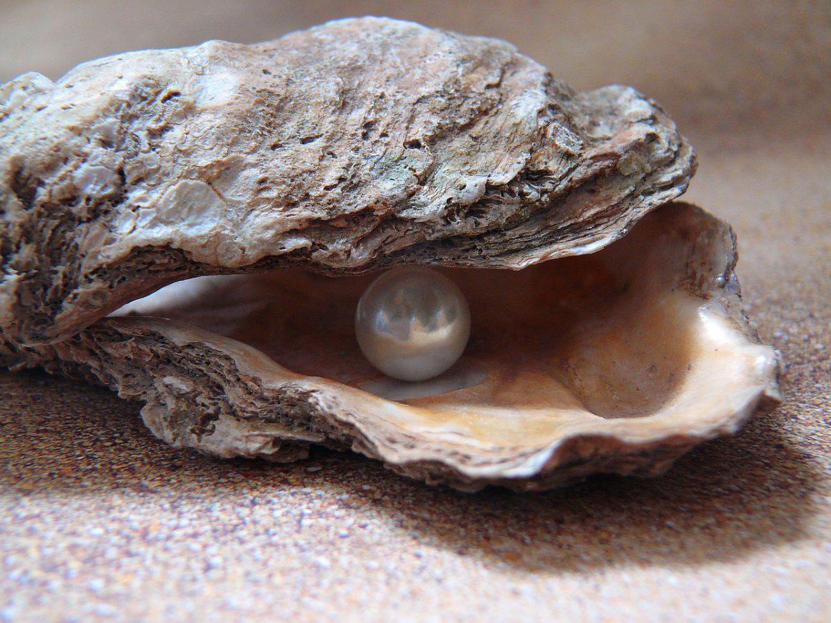Perlenpuder, Foto: PIXABAY