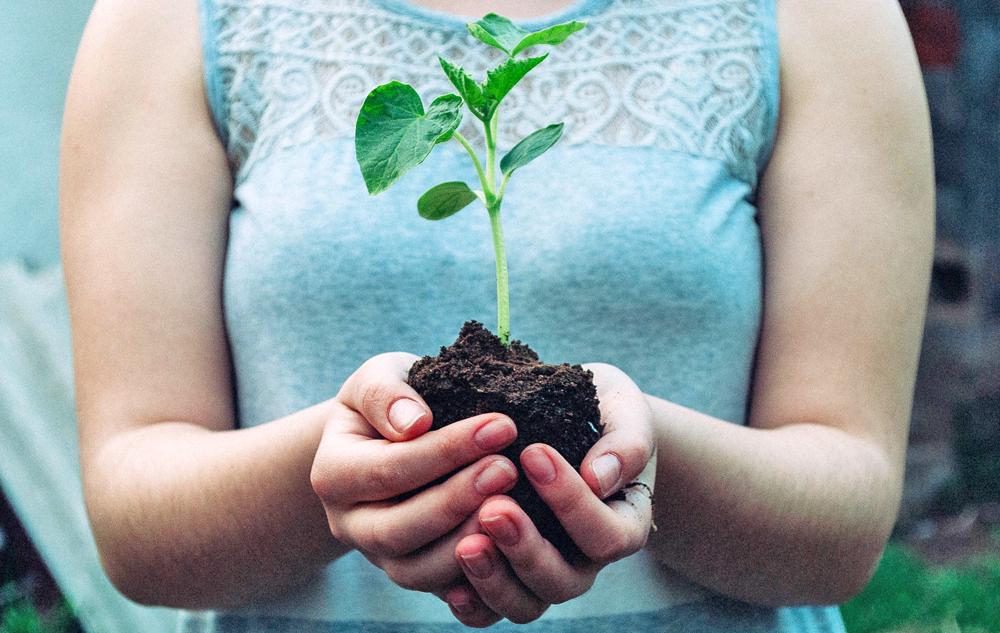 FAKTEN Rohstoffmangel bei Bio-Beauty? Bild: Unsplash