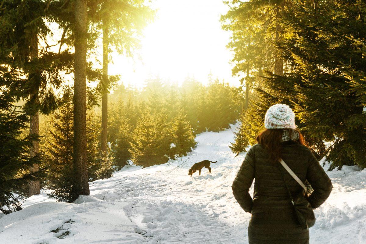 Wellness aus dem Wald mit ätherischen Ölen